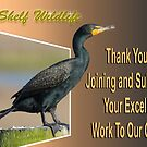 Top Shelf Wildlife Welcome Banner by Photography by TJ Baccari