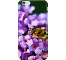 Purple Hoverfly iPhone Case/Skin