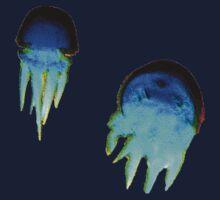 Jellyfish by alexv