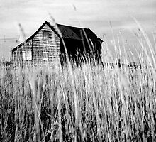 Weathered House #863 by Paul Cooklin