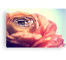 This is a world filled with love and other things... Canvas Print