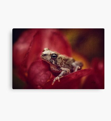 The Secret World of Peepers Canvas Print
