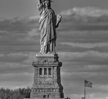 Liberty by AJM Photography