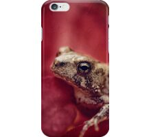 The Secret World of Peepers iPhone Case/Skin