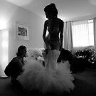 The Mermaid Bride by Aurel Virlan