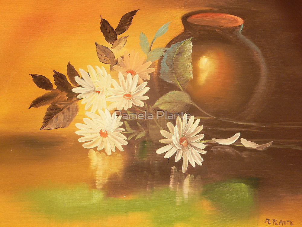 Daisies by Pamela Plante