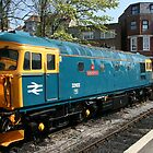 Diesel locomotive at Swanage railway by motorista
