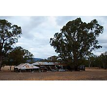 The old Shearing Shed Photographic Print