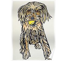 #5: Ruby the Morkie: Messages from the Dogs Oracle Deck Poster
