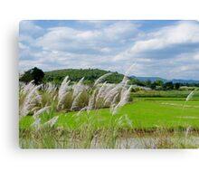 Rural View Canvas Print