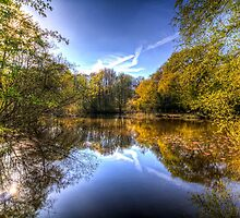 The Mirror Pond by DavidHornchurch