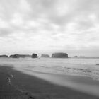 Images of the Oregon Coast by Jessica Hardin by Jessica Hardin