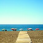 Come to the beach by rockko