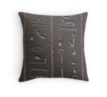 Archaeology is sexy Throw Pillow