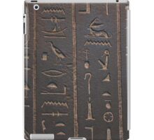 Archaeology is sexy iPad Case/Skin