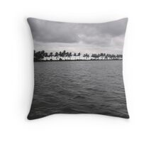 Waves in a lake with wind-swept palm trees at the far end Throw Pillow