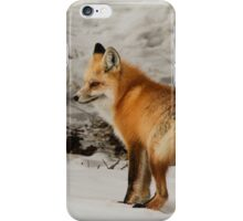Red Fox #1 iPhone Case/Skin