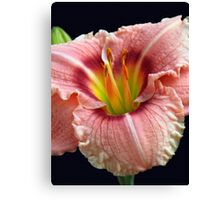 Touch of Green Daylily Canvas Print