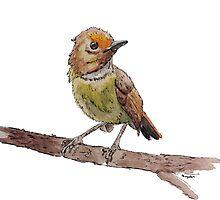 Stay Birdie by kaydencabinaw