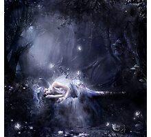 Moonlight fairy Photographic Print
