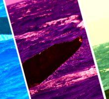 Whale - Humpback Sticker