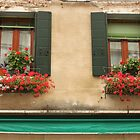 Italian Windows by Elena Skvortsova