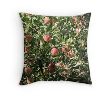 Ripe apples  on the tree Throw Pillow