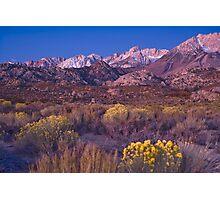 Sierras Alpine Glow Photographic Print
