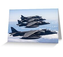 Harrier Quartet Greeting Card