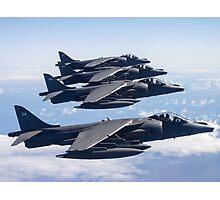 Harrier Quartet Photographic Print