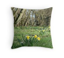 Daffodils steal the show at Farndale Throw Pillow