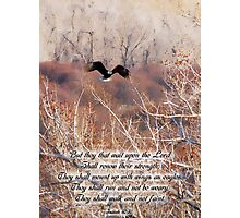Isaiah 40:31 Photographic Print