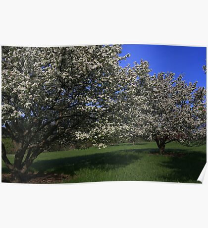 Crabapple Hill Poster
