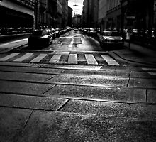 winter street. vienna, austria by tim buckley | bodhiimages