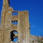 Sherborne Old Castle by lezvee