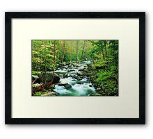 MIDDLE PRONG LITTLE RIVER,SPRING  Framed Print