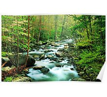 MIDDLE PRONG LITTLE RIVER,SPRING  Poster