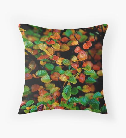 On the turn Throw Pillow