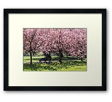 Under A Cherry Blossom Tree Framed Print