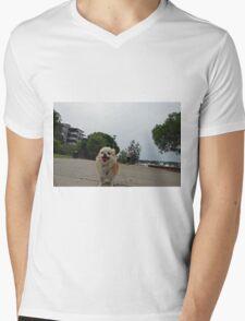 Jezebel adventure dog T-Shirt