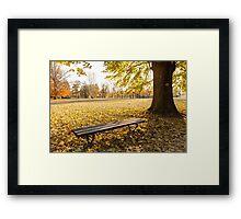 bench in autumn  Framed Print
