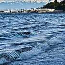 Overlooking the Sound by Shannon Beauford