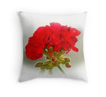 Summers Red Geraniums Throw Pillow