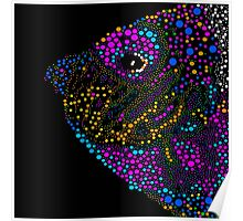 Angel Fish Abstract Poster