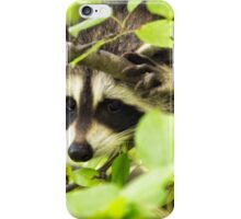 Are You Looking At Me? iPhone Case/Skin