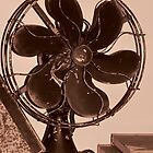 The Fan by MichelleR
