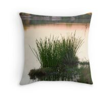 Refelections Ord River Throw Pillow