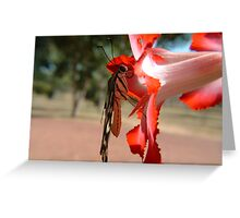 Desert Rose Hitchhiker Greeting Card