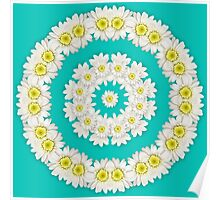 Wreath of Daisies on turquoise background Poster