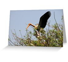 Painted Storks Greeting Card